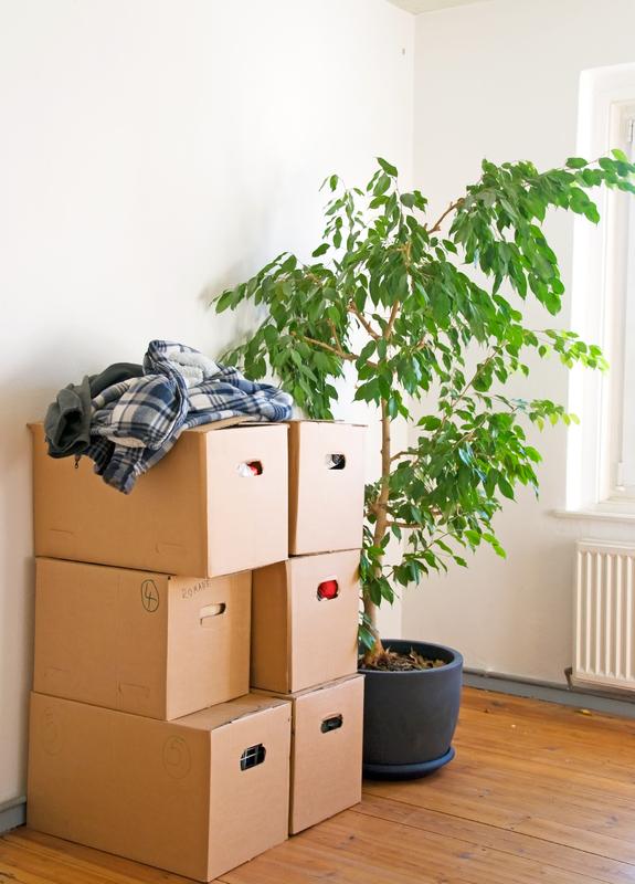 Wohnungssuche-Deutschland-Wohnung-suchen-umzug